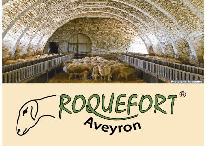 couteau_roquefort